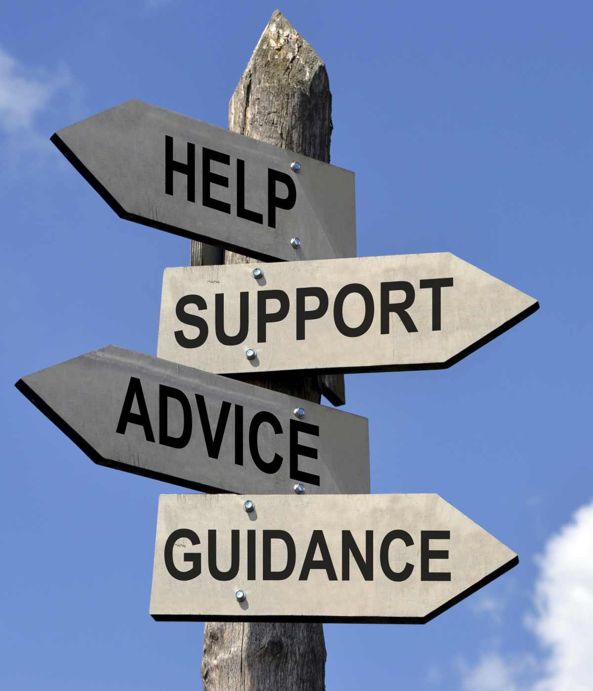 professional support, help and guidance